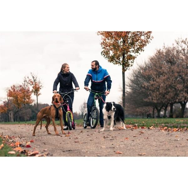 NEU YEDOO SCOOTER ROLLER YEDOO DOG ADAPTER 28.6 Hunde antenne