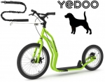 YEDOO MEZEQ Disc Dog-Scooter SPEZIAL grün